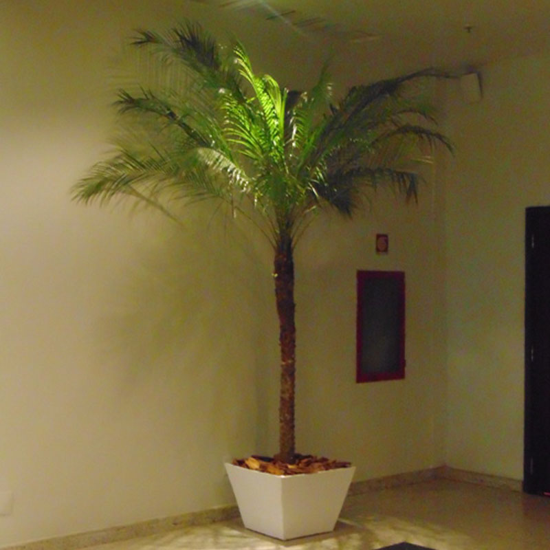 Palmeira Phoênix 2,00 m com cachepot de madeira